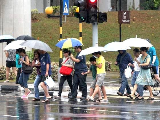 umbrella.jpeg