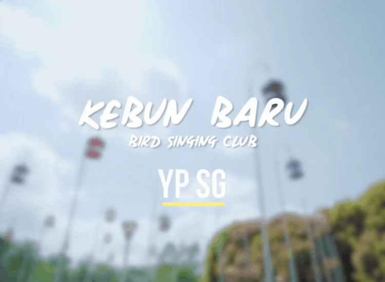 Kebun Baru Bird Singing Club