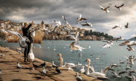 Ever Wondered How It Feels Like To Have Ornithophobia? Let…