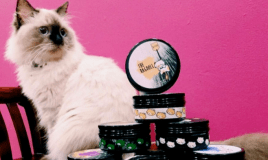 Within A Year, Her Adorable Cat Tea Brand Expanded To…